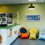 Animal Clinic interior commercial design