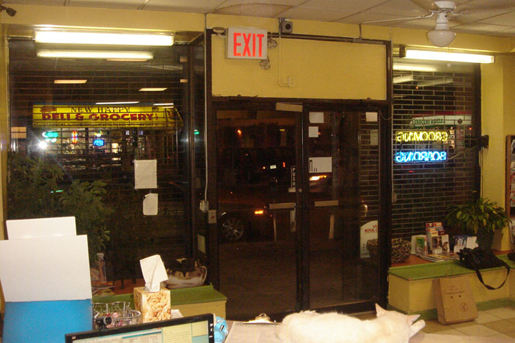 Animal clinic of lic commercial design nyc interior design for Commercial interior design nyc